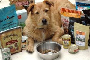 Best Dog Foods Ranked