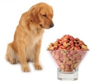 Commercial Dog Food