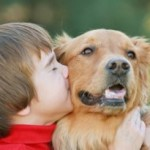 Causes and Treatment For Bad Dog Breath