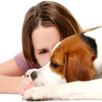 What Are The Common Dog Health Problems?