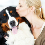 Are Dog Food Ratings Important?