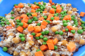 Home Cooked Dog Food Recipe