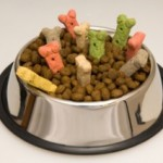 What's Really in Commercial Dog Food?