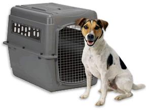 Transport Dog Crates