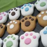 Dog Treats For Your Special Pet