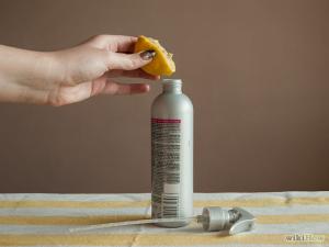 natural flea prevention