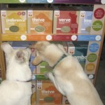 Dog Food Choice Is Changing Your Dog's Life