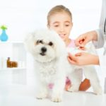 Vaccination Protocol
