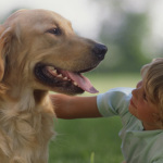 Causes of a Dog's Bad Breath
