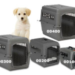 Tips On How To Choose The Best Dog Crate For Flying