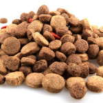 Dry Dog Food Reviews