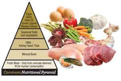 Natural Dog Food