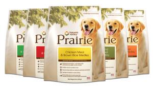 Prairie dog food