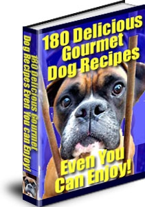 Pet Food - Homemade Dog Food