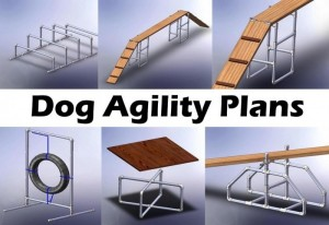 Dog Agility Equipment Plans