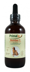dog urinary tract infection