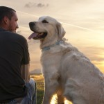 Give Your Pet The Food He Deserves, Go For Natural Dog Food