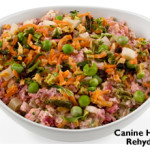 Dog Food: Towards A Happy And Healthy Life