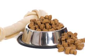 Best Dog Foods