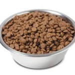 Unbiased Dog Food Reviews