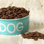 Dry Dog Food Reviews for You