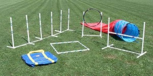 Agility Equipment for Sale